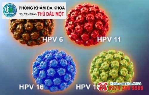 Thông tin về virus HPV